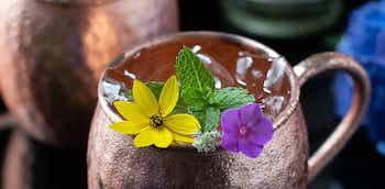 Jalisco Mule Cocktail